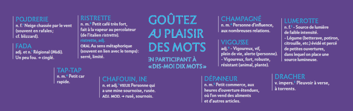 bandeau_dis-moi_dix_mots_avce_fond_violet_etale