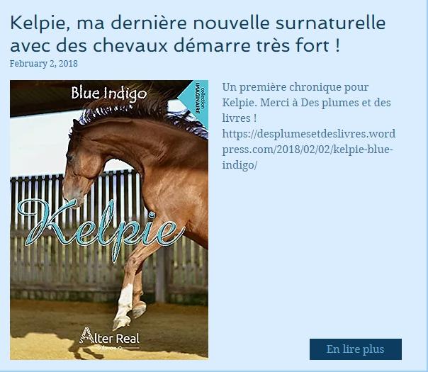 Blue Indigo Kelpie