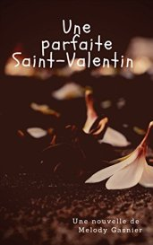 Une parfaite St Valentin