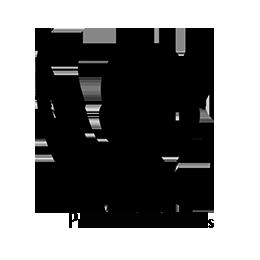 Logo-PAI-wp